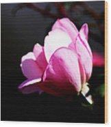 A Simple Rose Wood Print