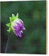 A Single Bud Wood Print