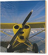 A Small Personal Aircraft Sitting Wood Print