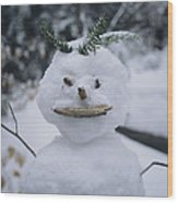 A Smiling Snowman With Twig Arms Wood Print