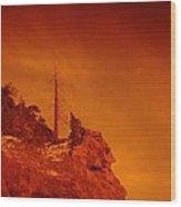 A Snag On A Cliff Wood Print
