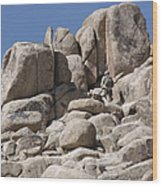 A Soldier Climbs A Mountain Wood Print
