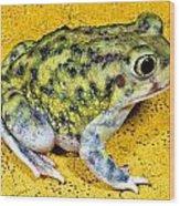 A Spadefoot Toad Wood Print