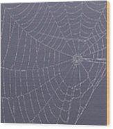 A Spider's Handiwork Wood Print