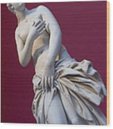 A Statue Of Aphrodite At The Acropolis Wood Print by Richard Nowitz