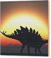 A Stegosaurus Silhouetted Wood Print