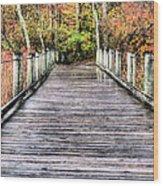 A Stroll Through Autumn Wood Print by JC Findley