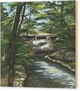 A Summer Walk Along The Creek  Wood Print