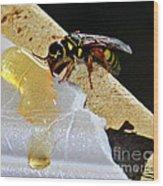 A Taste Of Honey Wood Print