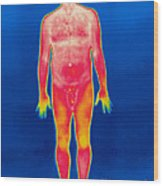 A Thermogram Of A Nude Man Wood Print