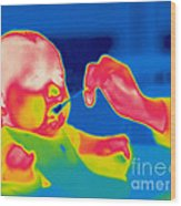 A Thermogram Of Feeding A Baby Wood Print