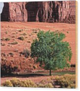 A Touch Of Green At Monument Valley Wood Print