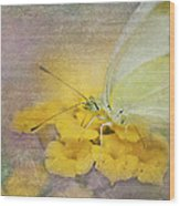 A Touch Of Yellow Wood Print by Betty LaRue