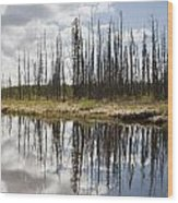 A Tranquil River With A Reflection Wood Print by Susan Dykstra