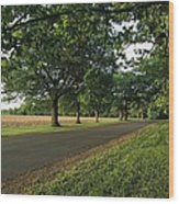 A Tree-lined Rural Virginia Road Wood Print