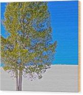 A Trees Shadow Wood Print