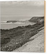 A View Central California Coast Wood Print