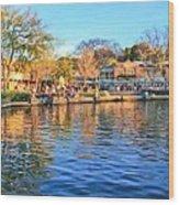 A View Of Disneyland From Tom Sawyer Island  Wood Print