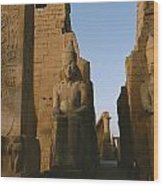 A View Of Luxor Temple Wood Print