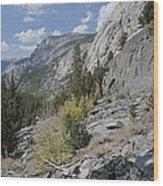A View Through Goddard Canyon Wood Print