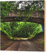 A Walk Along The Tracks Wood Print