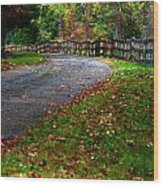 A Walk In An Autumn Afternoon Wood Print