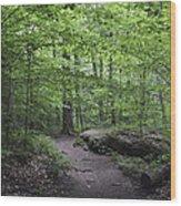 A Walk In The Catskills Wood Print