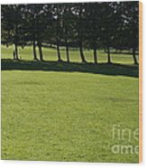 A Walk In The Park.. Wood Print