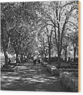 A Walk In The Park Wood Print