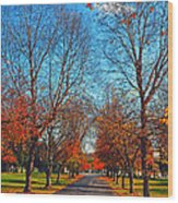 A Walk To Remember  Wood Print