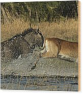 A Wildebeest And A Red Lechwe Leap Wood Print