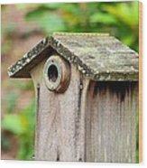 A Winter's Getaway For Birds Wood Print