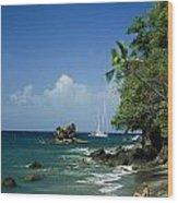 A Woman Enjoys Sunbathing On The Beach Wood Print by Anne Keiser