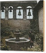 A Woman Stands Next To A Fountain Wood Print