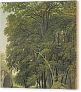 A Wooded Landscape  Wood Print
