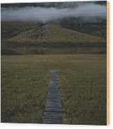 A Wooden Pathway Leads To An Wood Print by Randy Olson