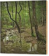 A Woodland Stream In Cades Cove No.472 Wood Print