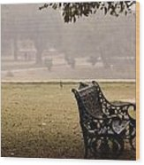 A Wrought Iron Black Metal Bench Under A Tree In The Qutub Minar Compound Wood Print