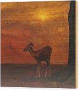 A Young Deer Wood Print