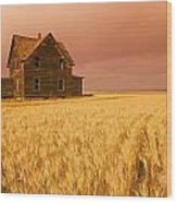 Abandoned Farm House, Wind-blown Durum Wood Print