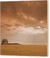 Abandoned Farm In Durum Wheat Field Wood Print