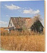 Abandoned Farmhouse 7 Wood Print
