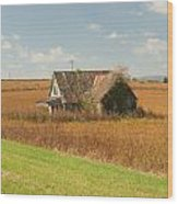 Abandoned Farmhouse In Field 2 Wood Print