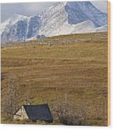Abandoned Farmhouse Outside Of Waterton Wood Print
