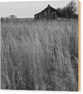 Abandoned Shack Bw Wood Print