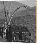 Abandoned Shack Livermore Ca Wood Print