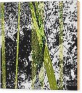 Abbyaldrichrockefeller Rock Study Mt Desert Me Wood Print