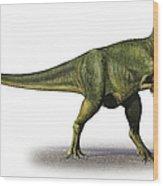 Abelisaurus Comahuensis, A Prehistoric Wood Print