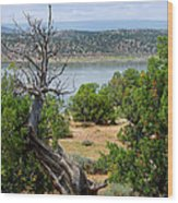 Abiquiu Lake New Mexico 2 Wood Print