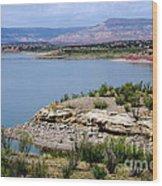 Abiquiu Lake New Mexico Wood Print